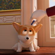 CORGI_Stills_180_0010_int_final_l.0161